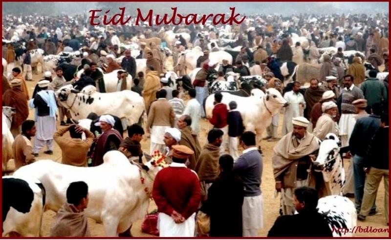 Best 60 Eid SMS Eid ul Adha 2017 Eid Mubarak