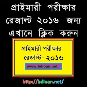PSC Exam Result 2016 | DPE.GOV.BD